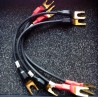 TEXTURA HP LS 15cm straps