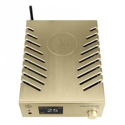 GOLDNOTE DS10 PLUS- DAC Streamer headphone amp